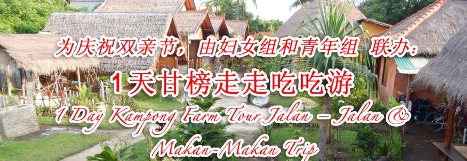 1天甘榜走走吃吃游 1 Day Kampong Farm Tour Jalan – Jalan & Makan-Makan Trip